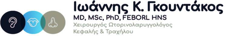 Ioannis K. Gkountakos